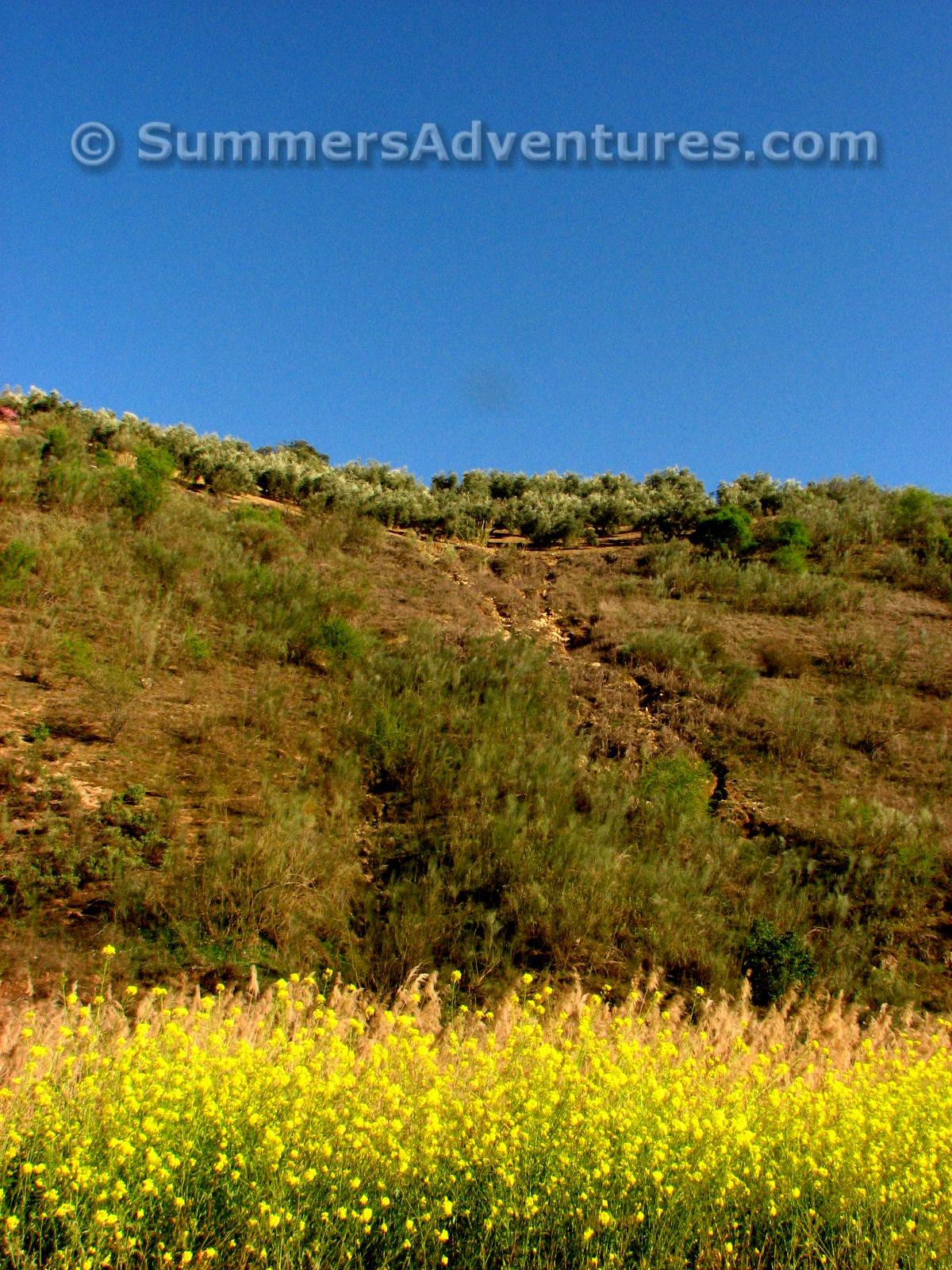 Camino De Iznajar