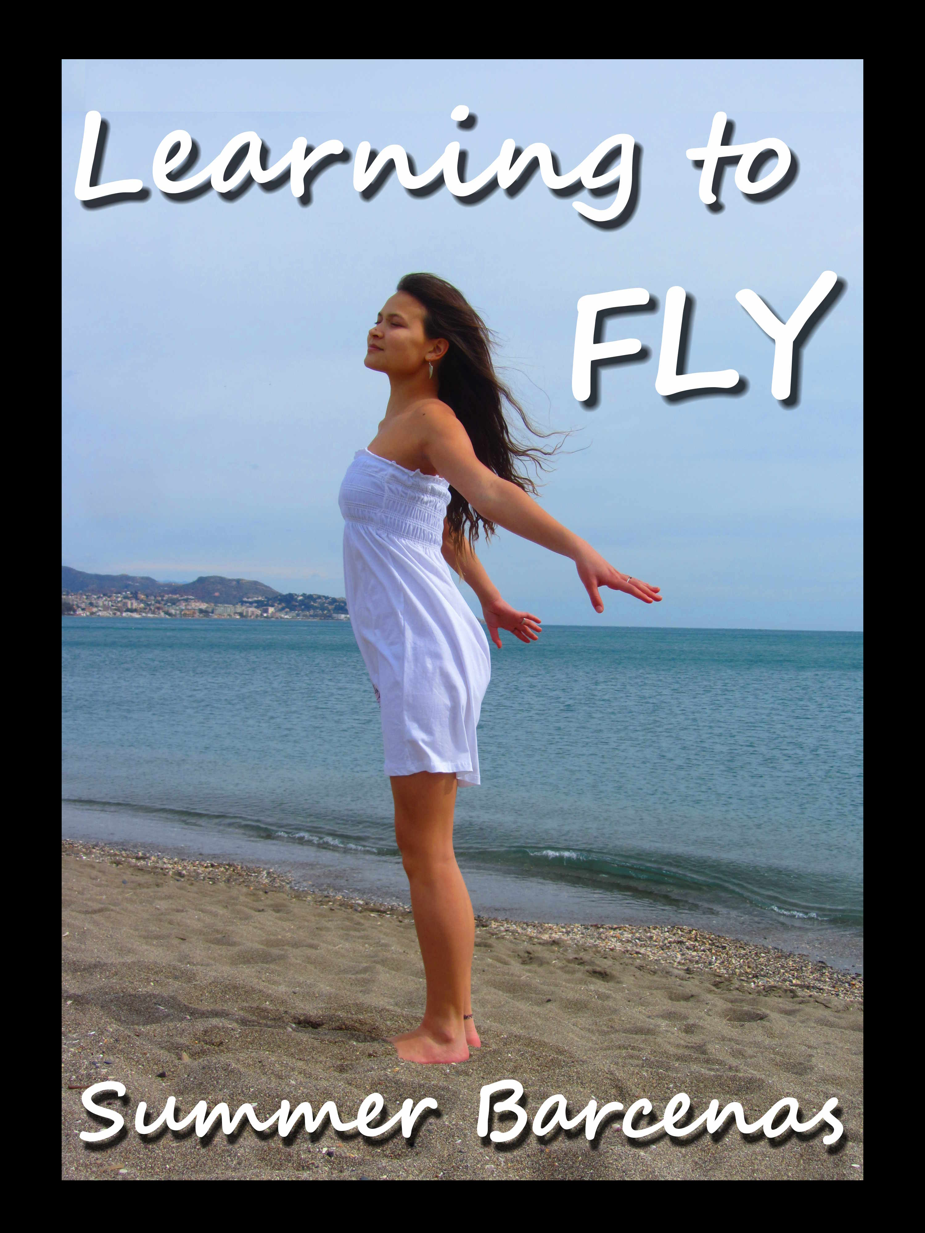 Travelsickness and Learning To Fly first chapter